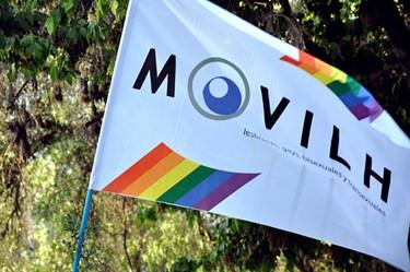 """Ley de adopción: Movilh califica de """"homofóbico"""" al presidente tras las declaraciones del nuevo Segpres"""